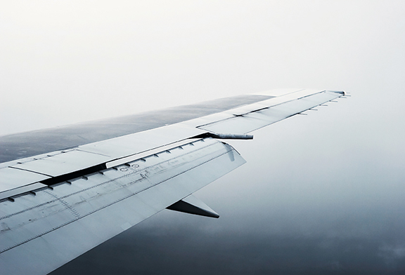 wing-8813